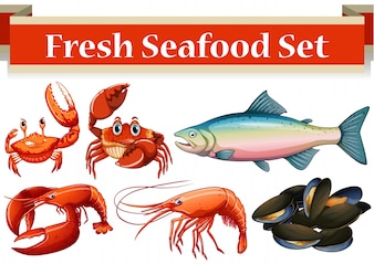 Different kind of fresh seafood illustration