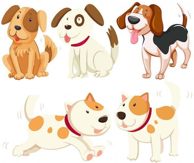 Различные виды щенков иллюстрации собак Бесплатные векторы