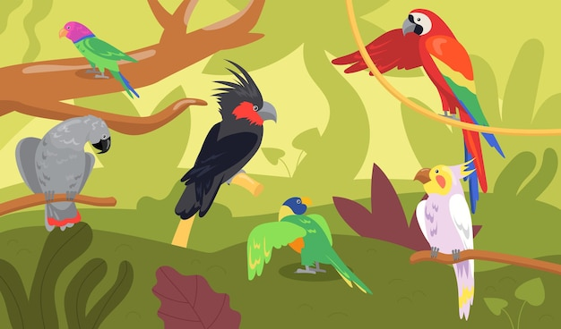 Different kinds of parrots in forest or jungle. wild tropical birds, exotic multicolored ara, macaw flat cartoon illustration