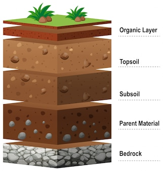 Different layers of soil on earth