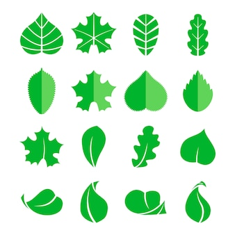 Набор различных листьев. иконы. элементы эко дизайна изолировать на белой предпосылке. зеленый лист дерева, иллюстрация натурального листа