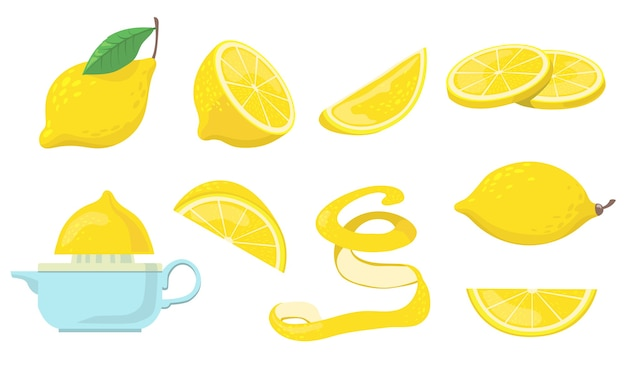 Different lemon pieces flat item set.