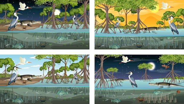 Различные сцены пейзажа мангрового леса с животными и растениями