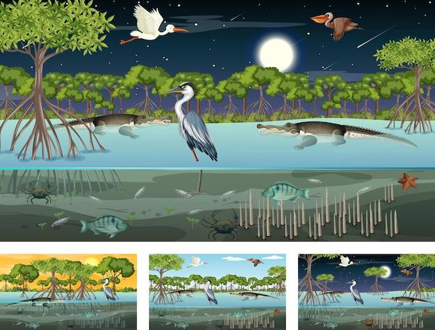 動物や植物とのさまざまなマングローブの森の風景のシーン