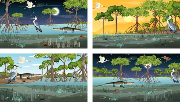 Different mangrove forest landscape scenes with animals and plants
