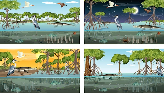 Different mangrove forest landscape scenes with animals