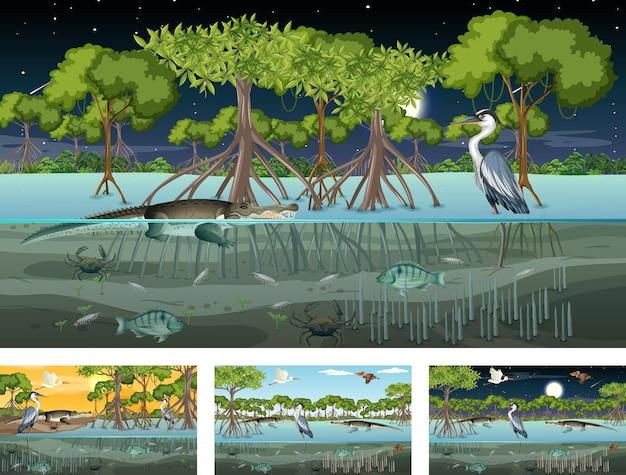 さまざまな動物とのさまざまなマングローブの森の風景のシーン