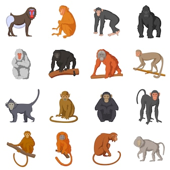 Different monkeys icons set