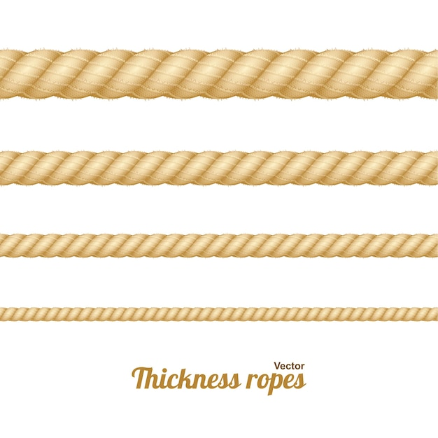 Different nautical twine brown thickness rope set isolated on a light background. vector illustration