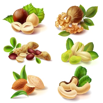 Different nuts realistic set Free Vector