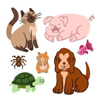다른 애완 동물 모음