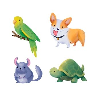 Different pets illustration pack