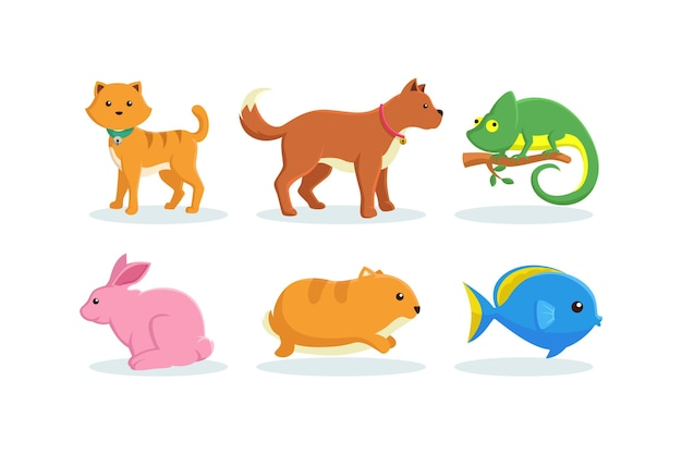 Different pets illustrations collections