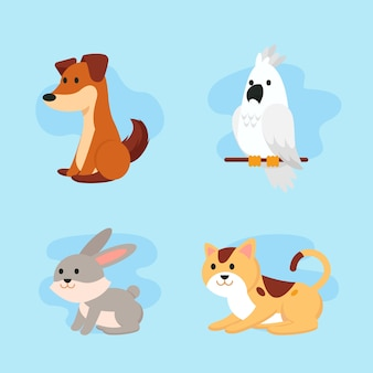 Different pets isolated on blue background