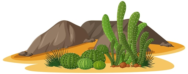 Different shapes of cactus in a group with rocks elements