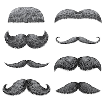 Different styles of male realistic mustaches set