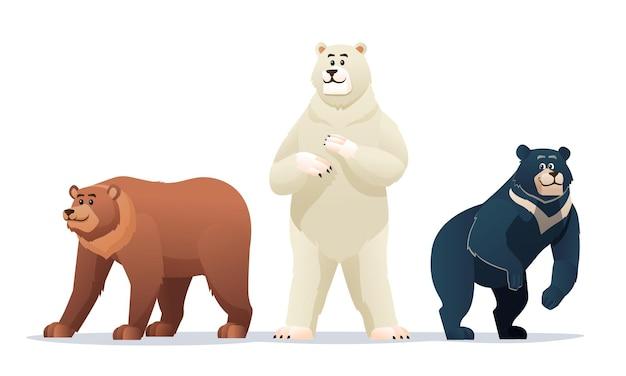 Different types of bears cartoon illustration