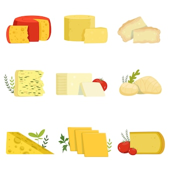 Different types of cheese pieces, popular kind of cheese  illustrations