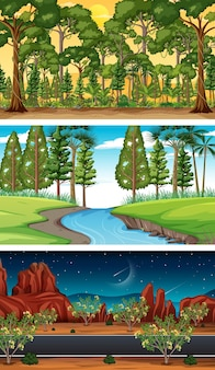 Different types of forest horizontal scenes