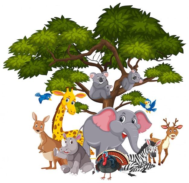 木の上のさまざまな種類の動物