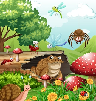 Различные виды насекомых в саду в дневное время