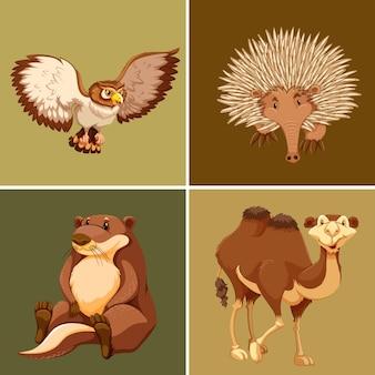 茶色の背景にさまざまな種類の野生動物