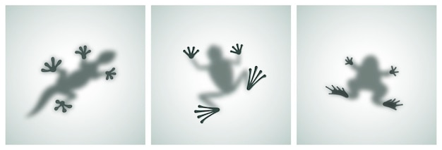 Diffuse reptiles silhouettes shadow abstract vector images set toad frog lizard gecko or chameleon s...