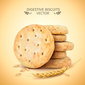 Digestive biscuits element illustration