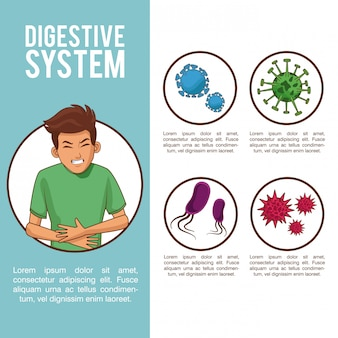 Digestive system bacterias poster