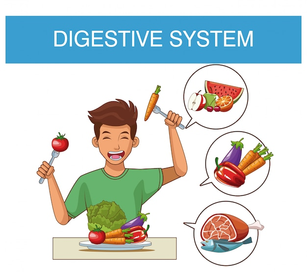 Digestive system and nutrition