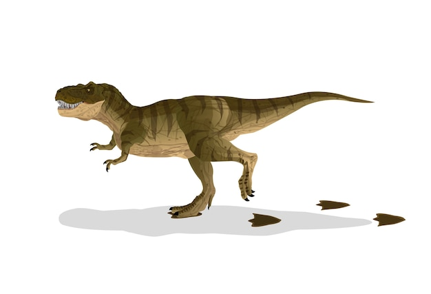 Dinosaur cartoon tyrannosaurus t-rex walked with footprints.