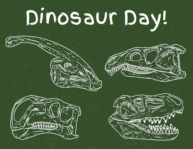 Dinosaur day in school. preschool paleontology day. carnivorous and herbivorous fossils drawn on green chalkboard. dino skulls line hand drawn sketch   image set