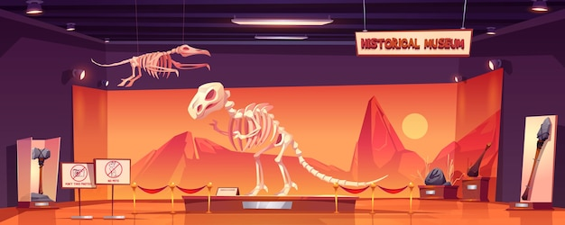 歴史博物館の恐竜の骨格