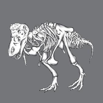 恐竜の骨格。