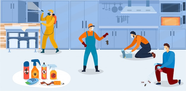 Disinfection in kitchen, workers of pest control service in uniform during sanitary processing of kitchen with insecticide chemical sprays  illustration.
