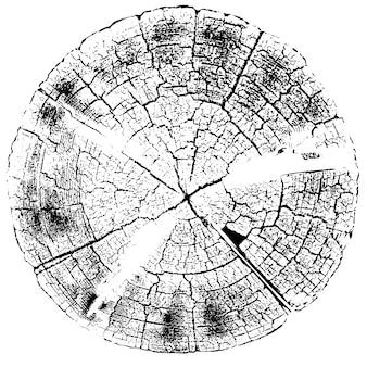 荒い表面、古い木の切り株、木の上のリングの苦しめられたオーバーレイテクスチャ。