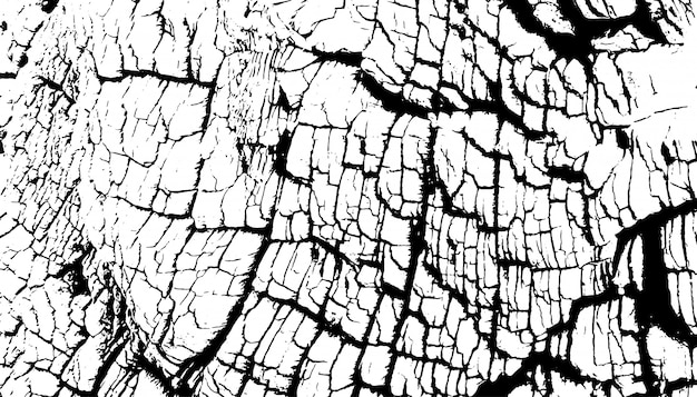 Distressed overlay texture of rough surface, old tree stump, rings on tree.