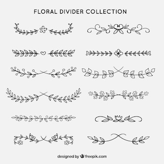 Dividers collection with floral ornaments