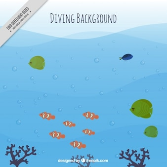 Diving background with fishes and seaweeds
