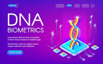 DNA biometrics technology illustration for personal identity recognition.