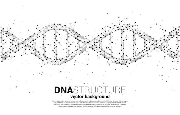 도트 연결 선 다각형에서 dna 유전자 구조. 생명 공학 및 생물학 과학에 대 한 배경 개념입니다.