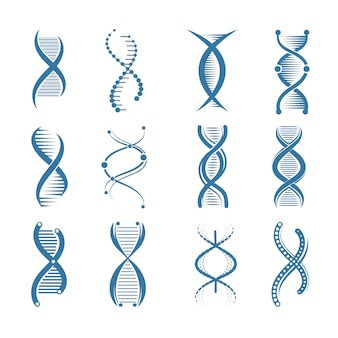 Dna icons. genetic biology human structure medical scientific representatives  symbols isolated