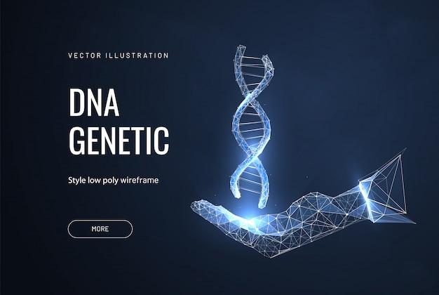 Днк в руках. концепция науки и техники