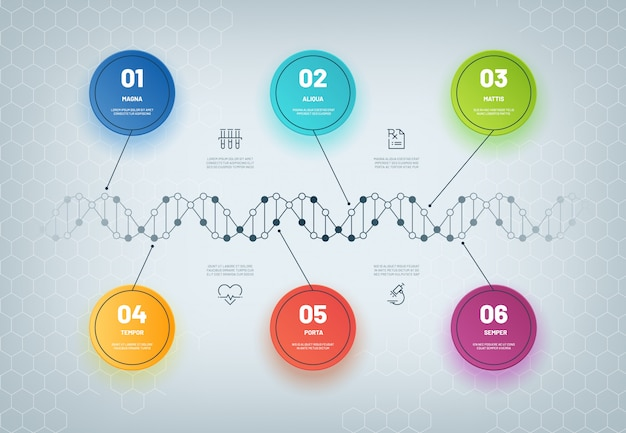 Dna infographic. molecular chain diagram, medical step infographic, business workflow. genetic model abstract
