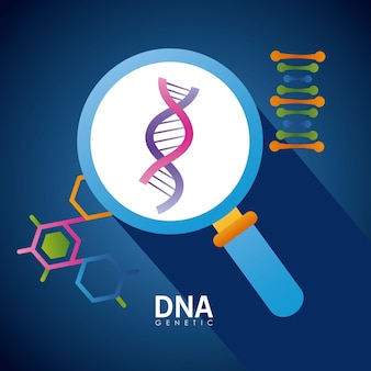 Dna and magnifying glass poster