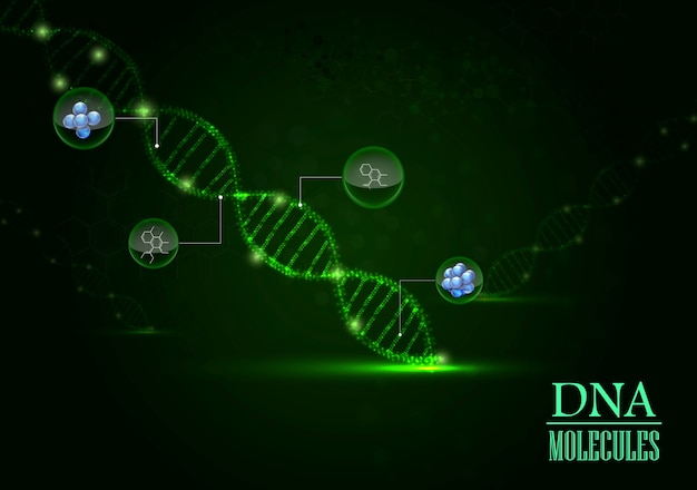 Dna model and molecule on green background
