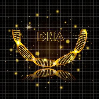 Dna molecule half circle golden structure