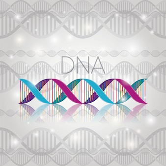 Dna molecule on line structure