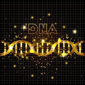 ラインゴールデンパターン上のdna分子
