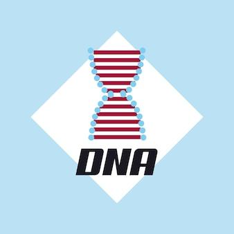 Dna molecule structure icon